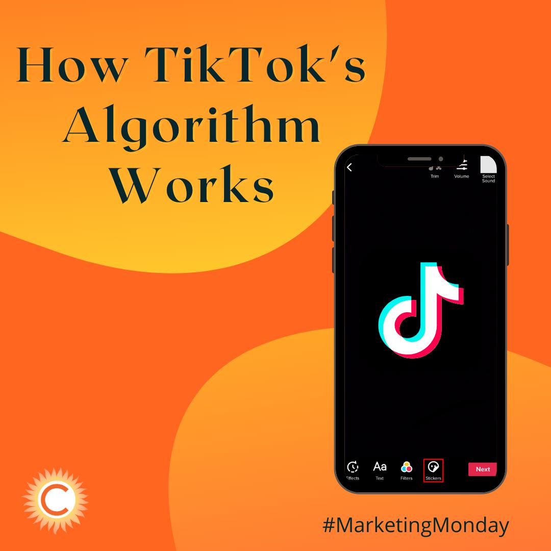 How the TikTok Algorithm Works in 2021